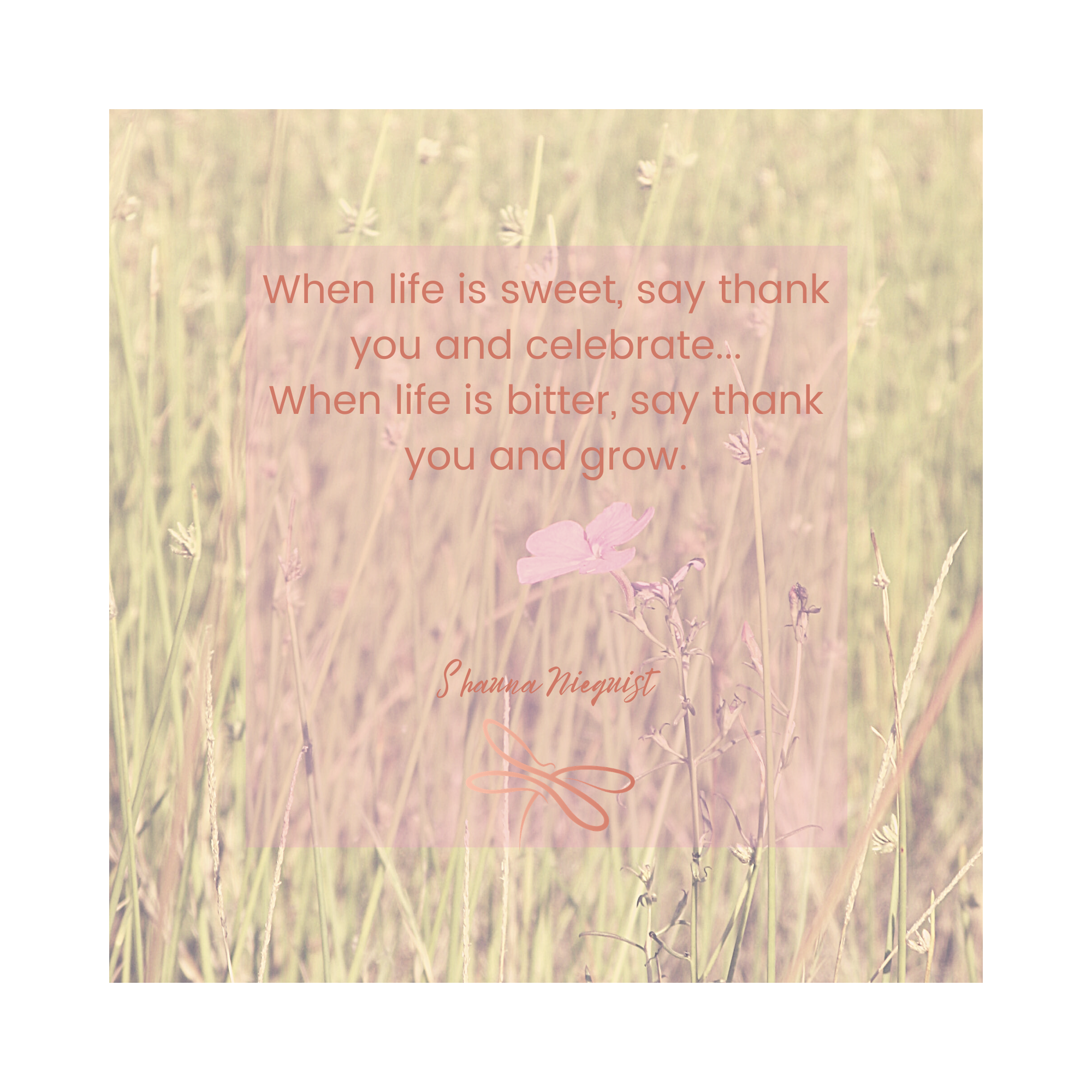 bittersweet quote